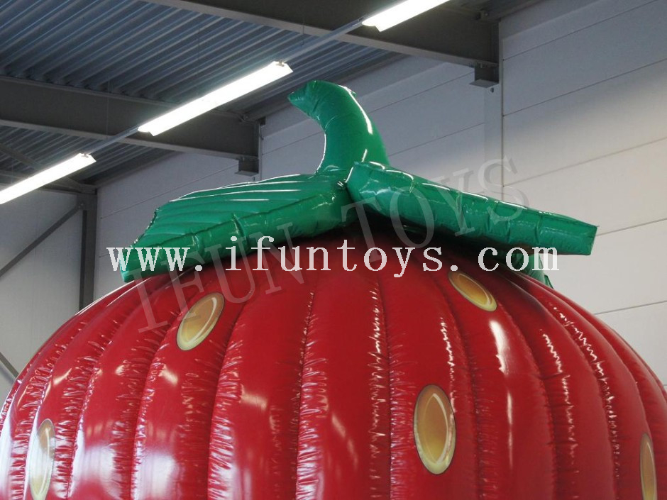 Inflatable Strawberry Bounce House / Jumping Castle for Party
